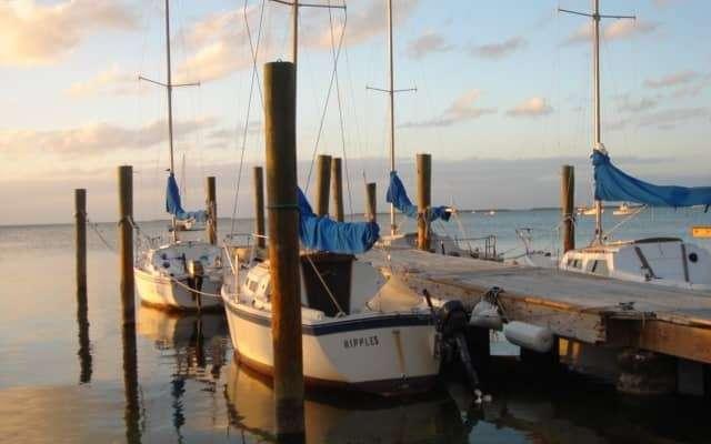 American-Sailing-Academy-fleet